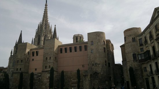 Catedral de Barcelona: the katedral in barcelona spain