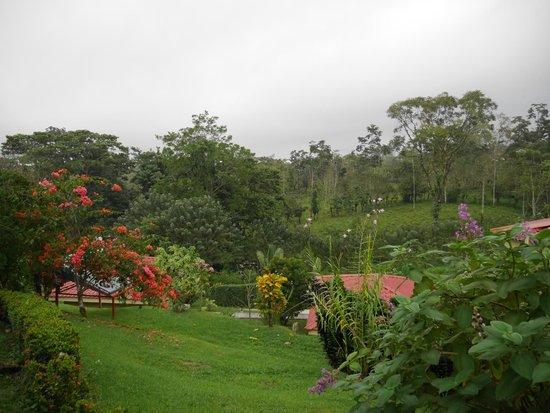 Arenal Volcano Inn: The landscape