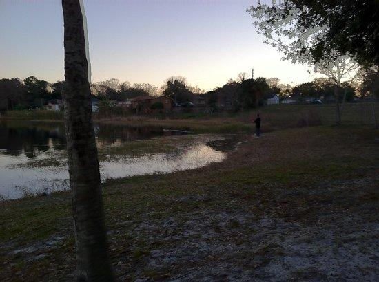 Hyatt Regency Orlando : Hakka
