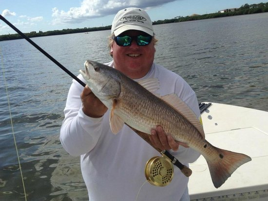 St pete beach tarpon fishing picture of fly fishing for Tampa fly fishing