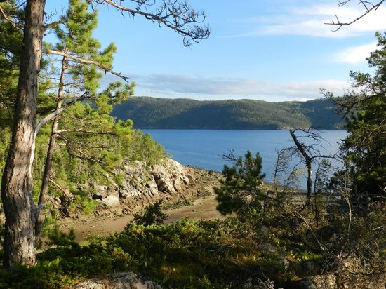 Saguenay Fjord National Park : View from one of the high points of the trail