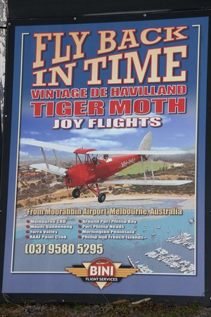 Fly Back In Time