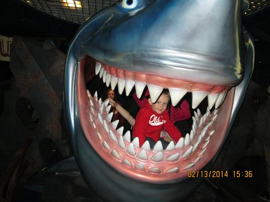 Epcot: Eaten by a Shark!  Yikes!