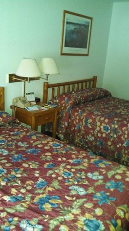 Super 8 Lake George/Warrensburg Area : Room 216