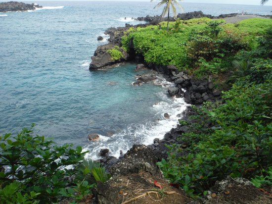Hana 4 Less Tours: One of the many beaches you can see from the road.