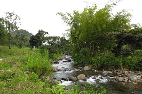 Ciudad de Segorbe Hostel Salento: Coffee tour hike