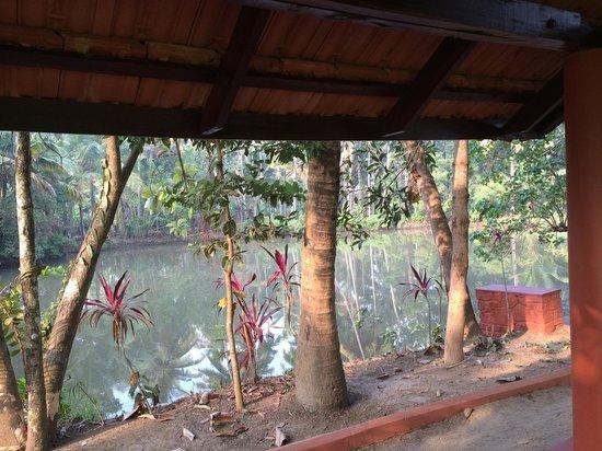 Emerald Isle - The Heritage Villa : Garden In Rear