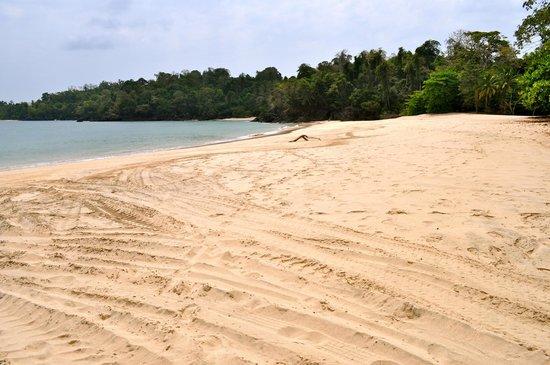 Hacienda del Mar: The beach