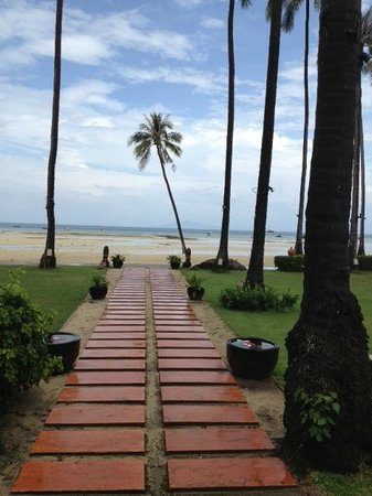 Phi Phi Island Village Beach Resort : After the rain,and the very low tide