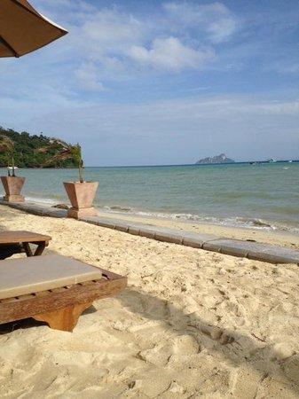 Phi Phi Island Village Beach Resort : Beautiful beach view