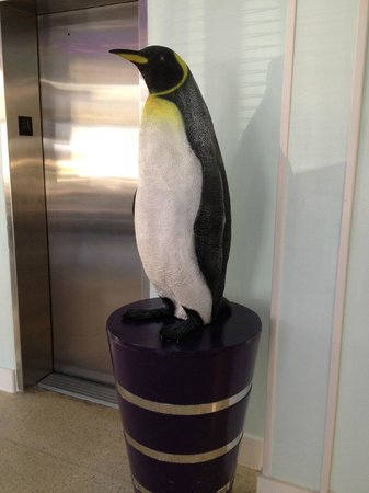 Penguin Hotel : Penguin Greeter!
