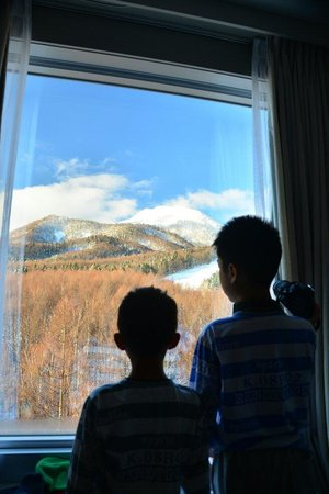 New Furano Prince Hotel : Great view from room
