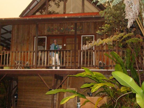 Lotus Garden Cottages: From the drive way!
