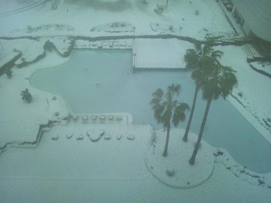 Sunroute Plaza Tokyo : 客室からの眺め~雪~