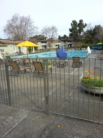 BEST WESTERN Corte Madera Inn : Resort Like Grounds