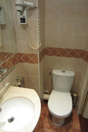 Eiffel Rive Gauche: small bathroom