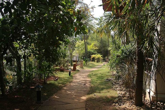 Fragrant Nature Backwater Resort & Ayurveda Spa: Path by the water