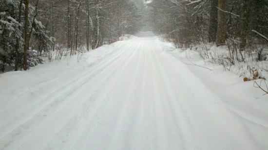 Lake Dennison State Recreation Area: Nice inside park snowmobile trail