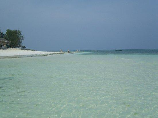 DoubleTree by Hilton Resort Zanzibar - Nungwi : marée basse