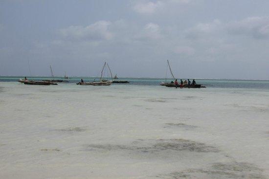 VOI Kiwengwa Resort: la spiaggia con la bassa marea