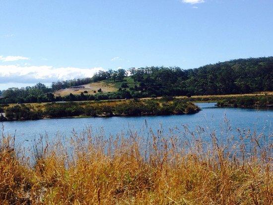 Pelican Point Sanctuary : The river