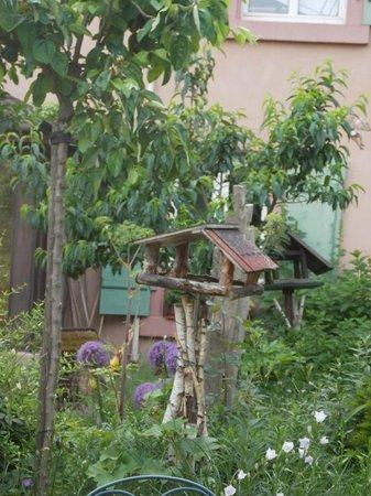 Villa Rosa : jardin