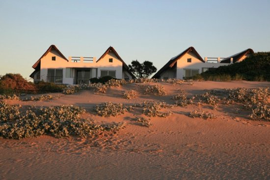 Cape St Francis Resort: Beach Break villas , set on the edge of the dunes