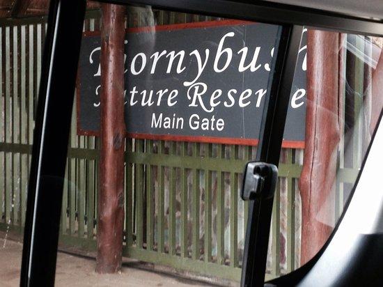 Thornybush Game Lodge: Entrance to bush paradise