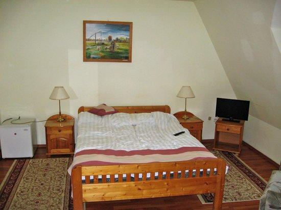 Gosztola Gyongye Wellness Hotel: Room 1