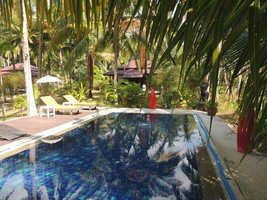 Coconut Lane Villas : la piscine