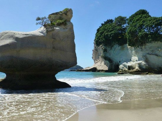 Cathedral Cove Walk : Cathedral cove