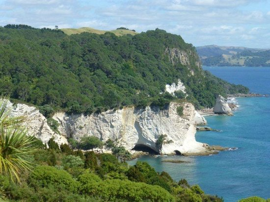 Cathedral Cove Walk : from the top of the walk