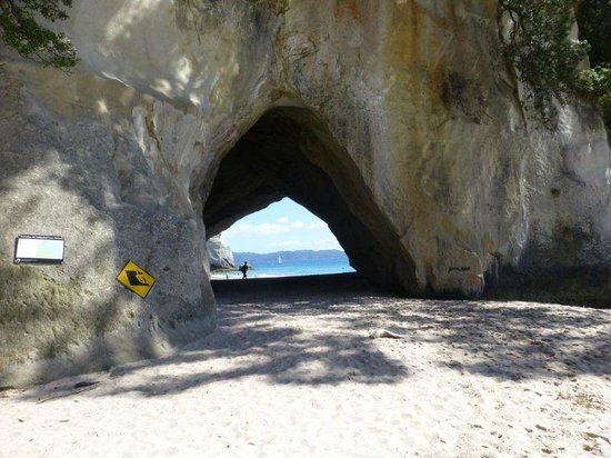 Cathedral Cove Walk: The cave
