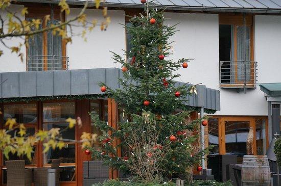Dorint Resort An den Thermen Freiburg: Елка