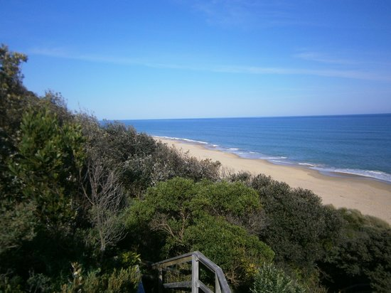The Lakes Beachfront Holiday Retreat: Stairs to Beach