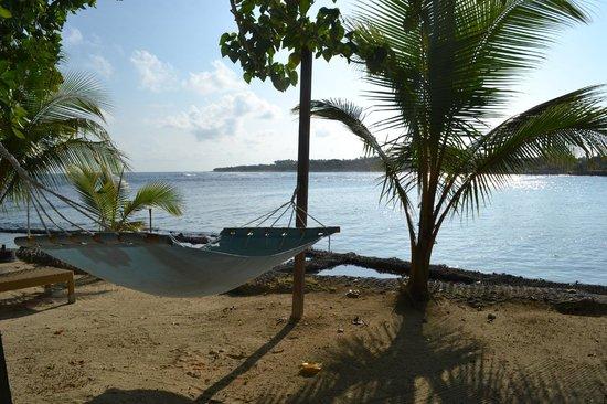 Breakas Beach Resort Vanuatu : View from Fare 32