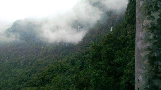 Yumbilla Waterfall: Cuispes jungle
