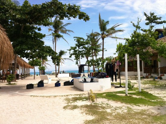 Evolution Diving Resort: The beach
