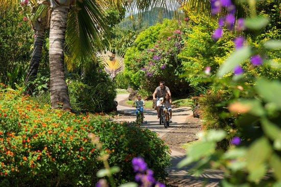 Garden pool villa bild von four seasons resort mauritius for Garden pool villa four seasons mauritius