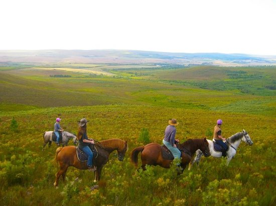 Doornbosch Guest House and Country Cottages: Riding