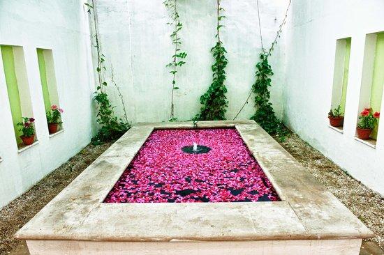 Taj Usha Kiran Palace, Gwalior : Spa area