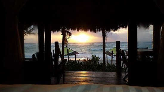 Ahau Tulum : This was our view in the morning waking up. Paradise!