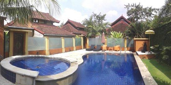 Bali Alizee Villas: Vue panoramique