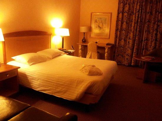 Millennium Hotel Paris Charles de Gaulle : Suite Buffalo