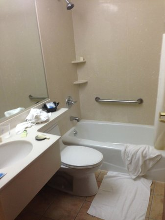 Best Western JFK Airport Hotel : Bathroom