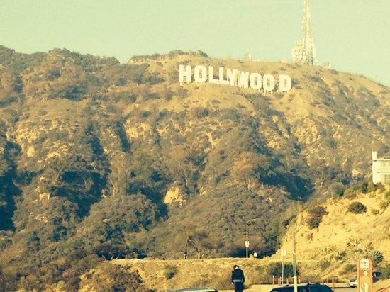 Griffith Park: Hollywood!