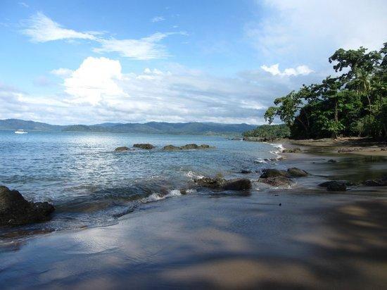 Copa de Arbol Beach and Rainforest Resort : Copa de Arbol Beach