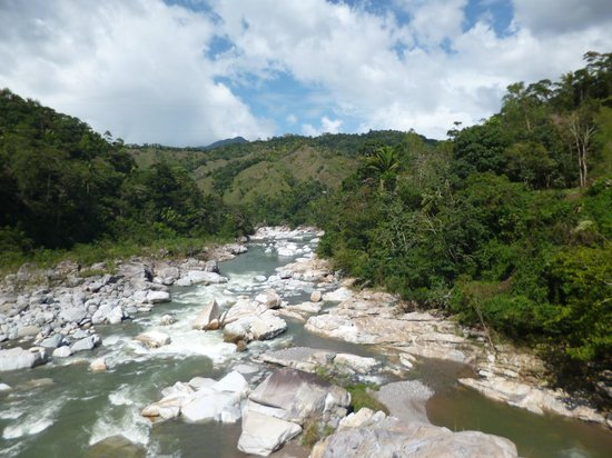 La Canasta Eco Lodge : The river
