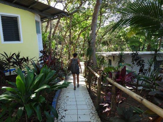 Hotel Boca Brava : Allées de l'hotel
