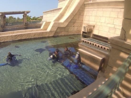 Aquaventure Waterpark: plongee dans le parc
